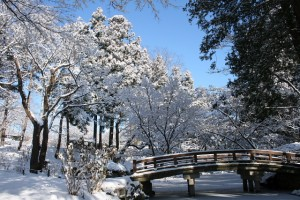 岩手公園の雪景色