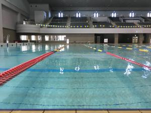 水泳始めました~。